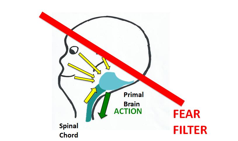 fear filter blog 1