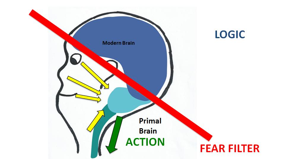 fear filter vs action blog 1